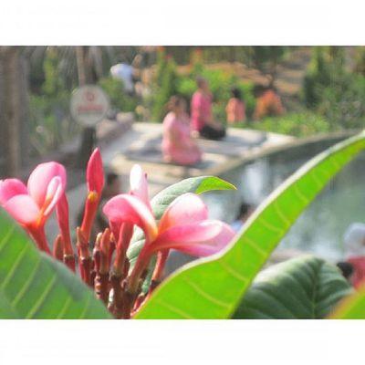 ber Meditasi setelah ber Yoga ria di Kampunglumbung Kotabatu INDONESIA PwC Lenovotography Photooftheday Pocketphotography Photostory Lzybstrd