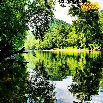 Kayaking The Caney Insta_exploring Instatennessee Instagram Ig_unique LIKE_A_LOCAL USA Tennessee Caney_Fork_River Kayaking Bluesky CLOUDSPACE Trees Greenery Nature Reflections