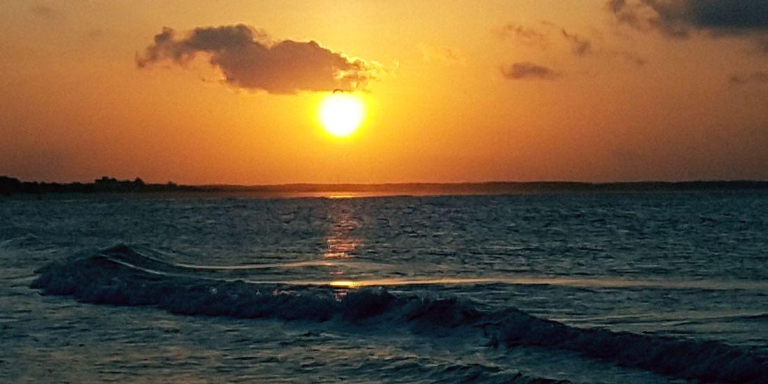 Sunset Sea Sun Beach Nature Scenics Wave