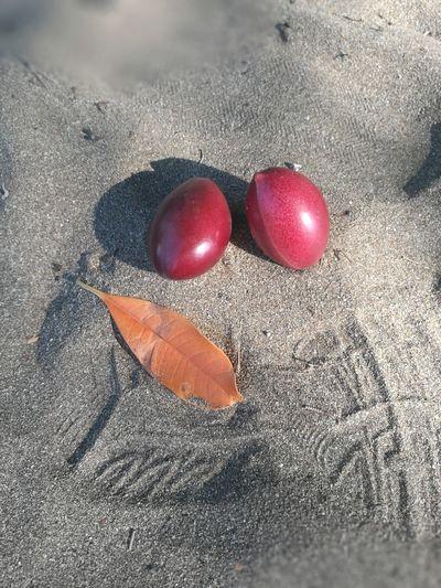 毒 果子 芒果 Sand Close-up Human Body Part Day Beach Indoors  One Person Nature People Jiufen Old Street, Taiwan