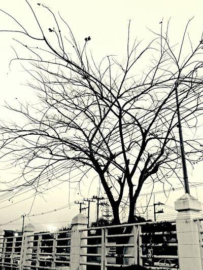 Streetphoto_bw Evening Feeling Alone Black&white