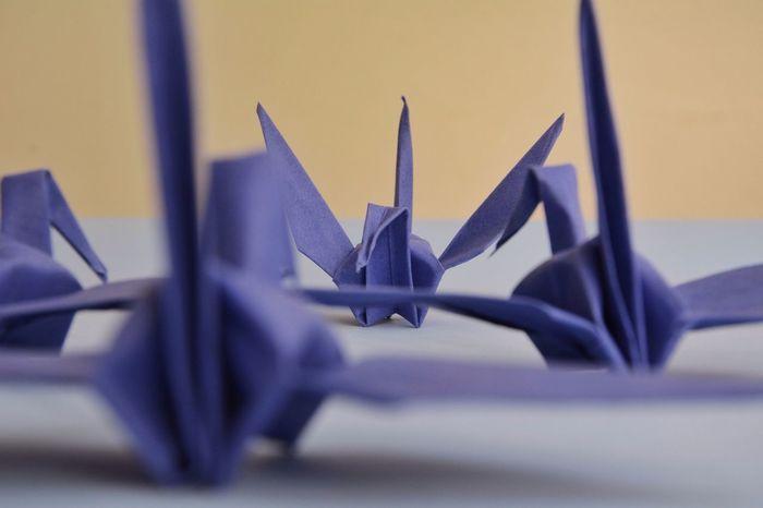 Origami Tsuru Leadership Eye4photography  Simplicity Minimalism On Paper EyeEm Best Shots Creative Light And Shadow Learn & Shoot: Layering Paper View Pastel Power