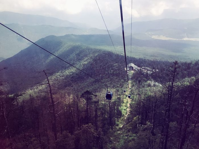 Mountain Cable Overhead Cable Car Nature Mountain Range Beauty In Nature Tranquil Scene Day Scenics Hanging Sky Outdoors Ski Lift No People Tranquility Fog Tree Landscape Cold Temperature Telephone Line