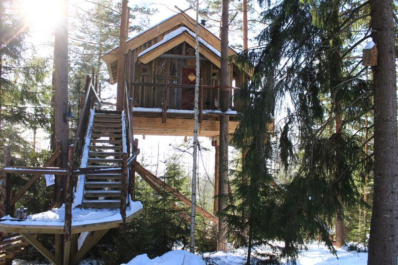 Treehouse Beauty In Nature Winter Architecture Snow No People Cold Temperature