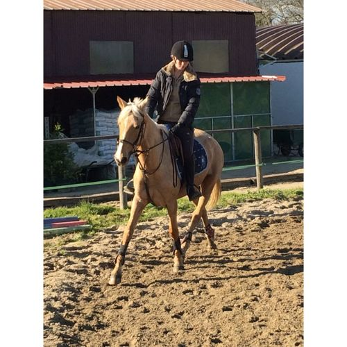 Horse Riding Vanille Jument Au Milieu De Nul Part Lpb