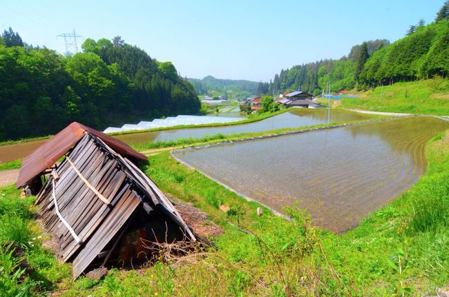 """Rice Fields  Country Introducing Culture Of Japan Which Must Be Left To The Future…… """"未来に残す日本の文化"""" Nature"""