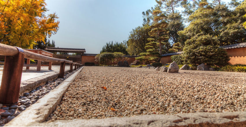 Los Angeles, CA, USA – November 25, 2016: Garden view of the grounds at the Huntington Botanical Gardens in Los Angeles, California. Editorial use. Botanical Gardens Chinese Day Flower Flowers Garden Huntington Botanical Gardens Japanese  Los Angeles, California No People Outdoors Path Tranquil Scene Tranquility Tree United States Zen Zen Garden