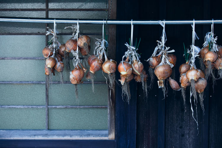Hanging Food And Drink Food Freshness Outdoors Vegetable Raw Food Wellbeing Onion Wall - Building Feature Wood - Material Window Architecture Focus On Foreground Vegetarian Food Vegetables Onions Foodporn Foodphotography Food Processing Countryside Country Life Country House Country Living Countryside Life The Foodie - 2019 EyeEm Awards