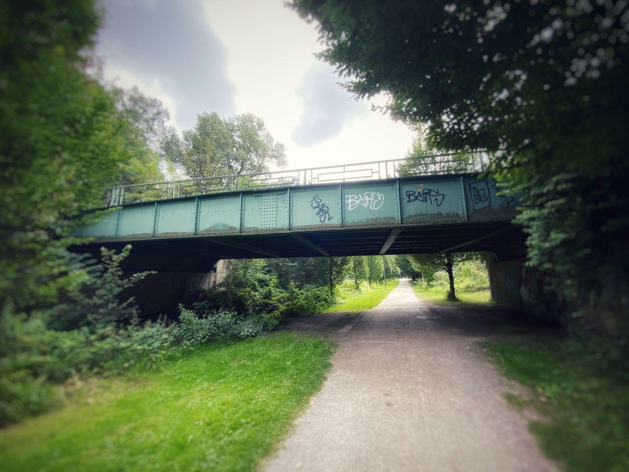 BRIDGE OVER ROAD AMIDST TREES