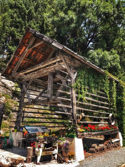 Built Structure Barn Wooden Structure Wooden Building Flowers Threes Kärnten Weißensee Austria Old Stove Grill Information Sign Stones And Pebbles