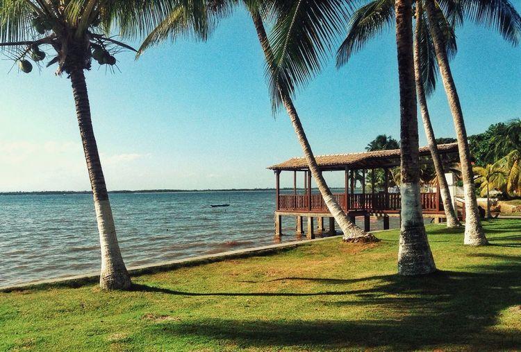 O belo ao alcance das mãos! My Paradise Sun Island Big Camamu Bahia Brazil Nature Beatiful Nature Byhappy Verão Beachphotography