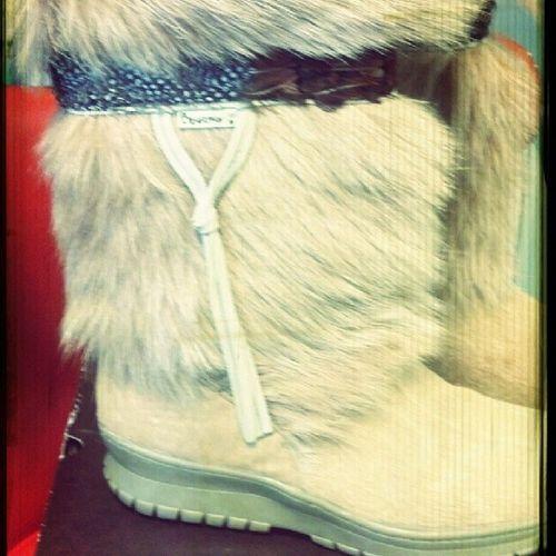 Size 10 Bearpaw Boots NWT Luckystarconsignment Luckystaristhebest Kingston