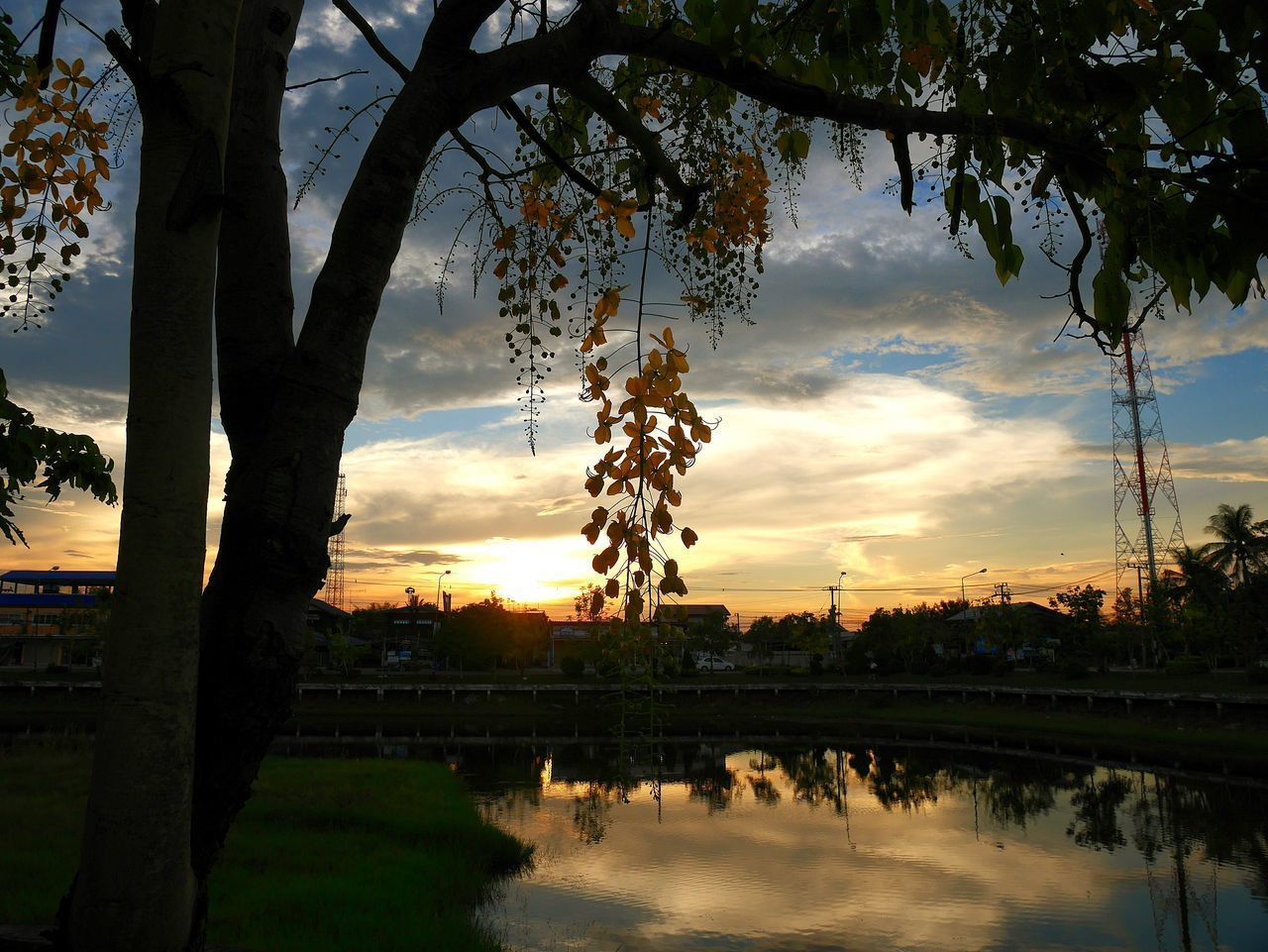 tree, reflection, sunset, sky, water, nature, silhouette, cloud - sky, beauty in nature, branch, tranquil scene, outdoors, no people, growth, scenics, tranquility, lake, architecture, day