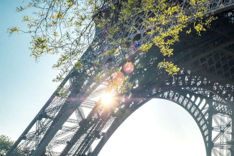 Tree Low Angle View Sky Sunlight Built Structure Architecture Day No People Lens Flare Sun Sunbeam Branch Growth Outdoors Beauty In Nature Arch Sunny Travel Destinations Bright Solar Flare Capital Cities  Eiffel Tower Sunlight Springtime Famous Place