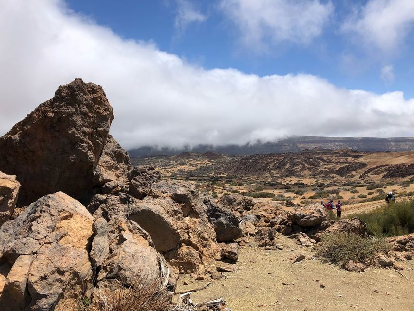 Teide National Park, Tenerife 🇪🇸 Nofilter Hiking Cloud - Sky Clouds Mount Teide Volcano Teide Teide National Park Mountain Tenerife SPAIN Rock - Object Cloud - Sky Sky Beauty In Nature Landscape Tranquility Environment Nature Scenics - Nature Tranquil Scene Land Sunlight Mountain Idyllic Tree Outdoors Plant