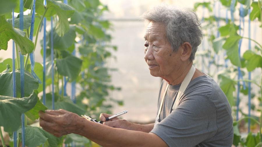 Portrait of man holding plants