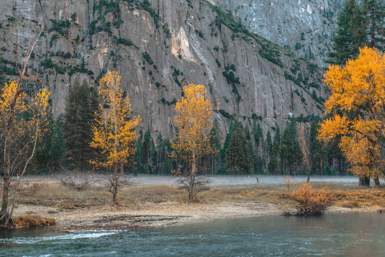 Yosemite National Park by Trevor J. Brown Canon EOS REBEL T5 30mm 30mm/ƒ/5.6/1/15s/ISO 100 Beauty In Nature Day Fall National Park Nature No People Outdoors Scenics Tree Water Wildlife & Nature Yosemite Yosemite National Park