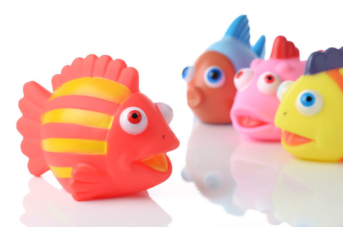colorful rubber fish society - boss and juniors Commander Junior  Rubber Fish Animal Animal Themes Art And Craft Assistant Boss Boss And Juniors Business Concept Chat Close-up Colorful Concept Inferior Major Minor Rubber Duck Selective Focus Society Still Life Studio Shot Talk Toy White Background