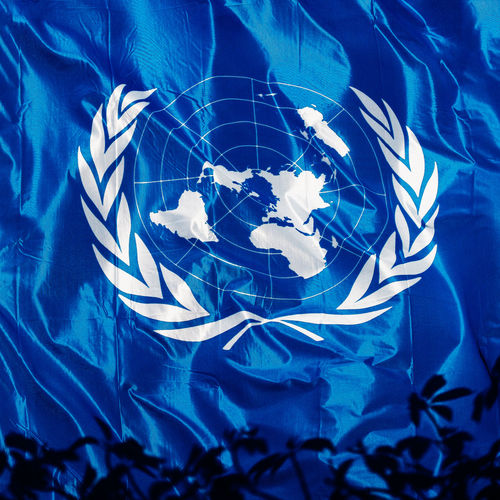 Blue No People Close-up Plant Plant Part Leaf Pattern Digital Composite Transparent Reflection Shape Illuminated High Angle View Day UNO United Nations Symbol Flag UN Flag United Nations Organization Human Rights International Organisation UN Security Council Full Frame