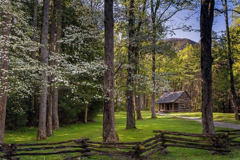 Carter Shields cabin in Cades Cove. Great Smoky Mountains National Park Cabin In The Woods History Historical Building Mountains National Park Travel Tennessee Appalachian Mountains