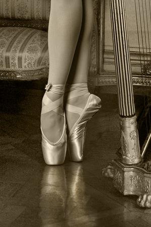 Art Ballet Classical Dance Dance Harp Pointe  Women