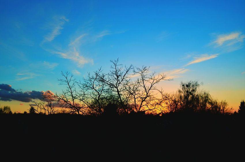 Landscape Berlin Nikon D5100  Sunset
