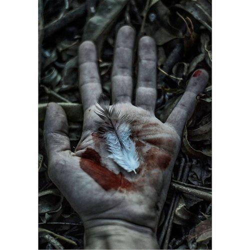 Blood Parededevidro Nikontop Fotoxigenio Photo_feed Instasize Hand Achadosdasemana Visuals4all Visualsoflife Visualbrasil