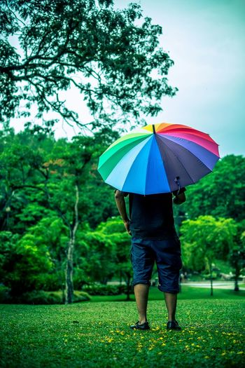 Rear View Of Man With Multi Colored Umbrella
