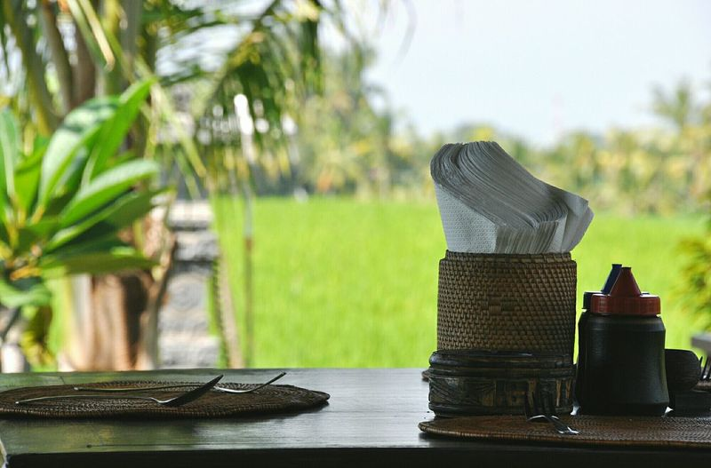 Eating in a hut in the middle of a rice field Eating Out Local Culture Restaurant Decor Restaurant Scene INDONESIA Rice Field Bali, Indonesia Restaurant Rice Paddy Amazing Place Relaxing Travel Relaxing Moments Tranquil Scene Relaxation Paradise Eating Decorations Peace And Tranquility Restaurant View Restaurant Interior Design Restaurant In Indonesia
