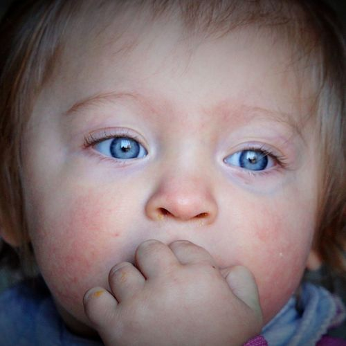Child Childhood Portrait Eye Baby Young Innocence Close-up Body Part One Person Human Face Human Body Part Headshot Looking At Camera Babyhood Blue Eyes