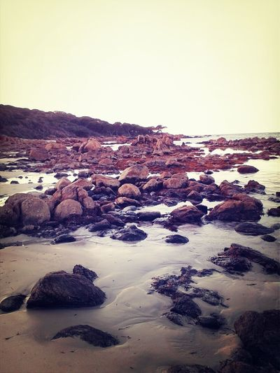 Nature_collection Australia Ocean Shores Tidesout