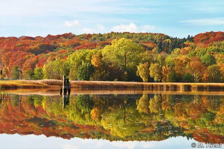 Insel Rügen In Rügen (north Germany) Rügen Canon 70d Nature Landscape Mirrorreflection Landscape_Collection Spiegelung Herbst