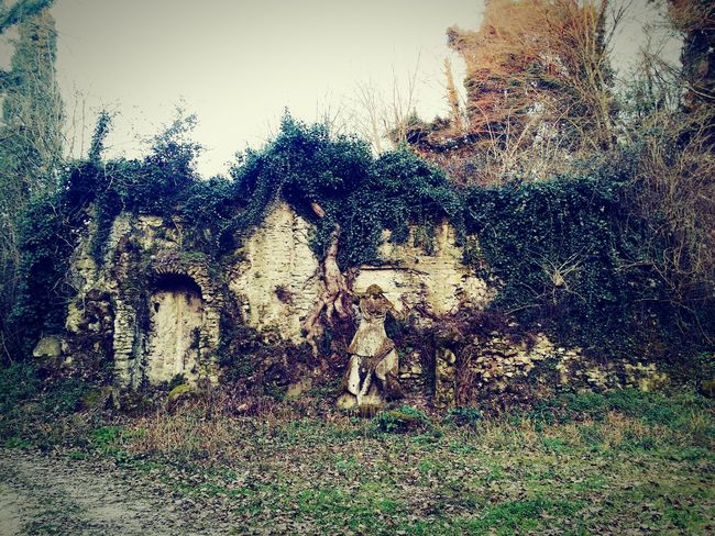 Marino Italy Archeology Nature A Walk In The Woods