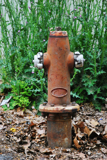 Accidents And Disasters Close-up Day Field Fire Hydrant Forest Green Color Hidrant Land Leaf Machine Valve Metal Nature No People Outdoors Plant Plant Part Protection Rusty Safety Security Valve