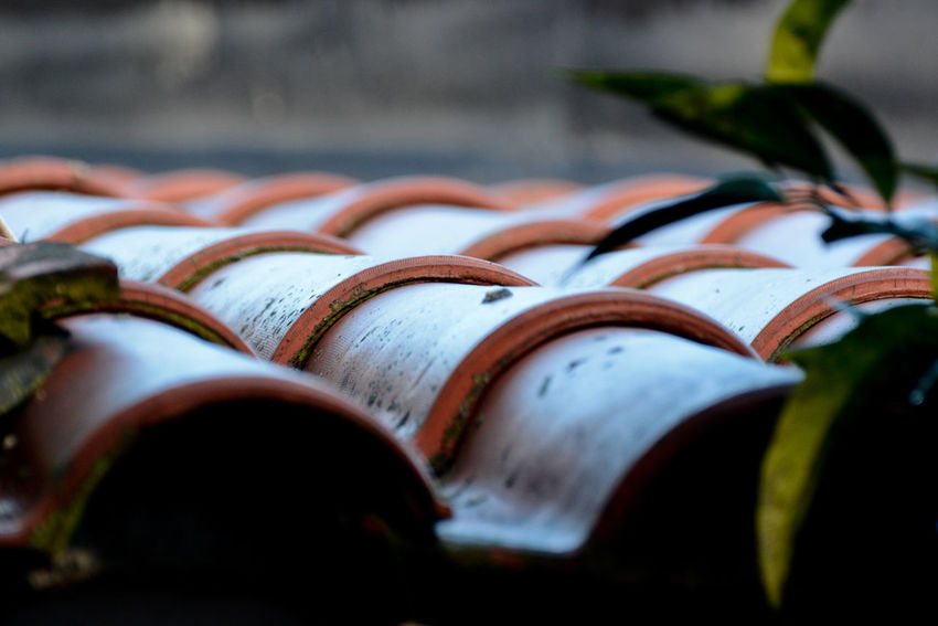Roof Wintertime Close-up Day Large Group Of Objects No People Outdoors Reining Selective Focus Shingles
