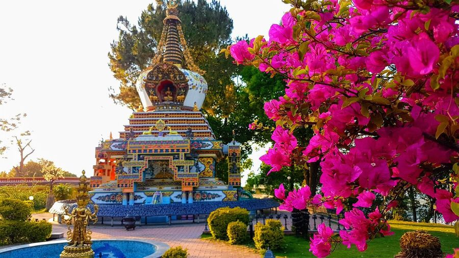 Perfect time or perfect place..? Stupa Nepal Spirituality Buddhist Religion Belief Place Of Worship Spirituality Plant Sculpture Architecture Flower Outdoors