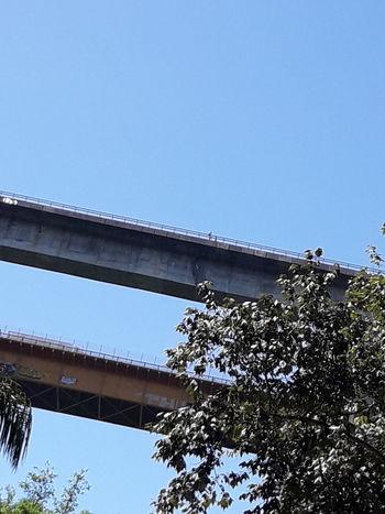 Puentes Bridge Caminosmexicanos Nature