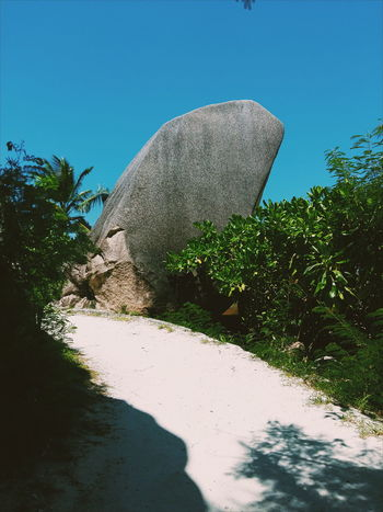 Anse Source D'argent Clear Sky Day Granite Growth Nature No People Outdoors Plant Seychelles Sky Stone Tree