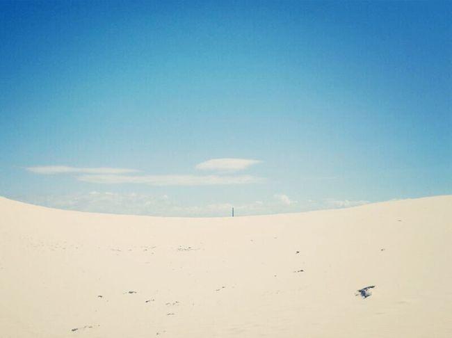 시드니 여행당시 찍은 사진