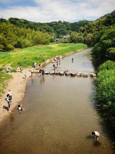 River Water Nature Oita Oita-prefecture Oita,japan