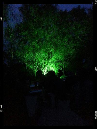 Grünes Licht: Vorbereitung zum Dorffest Ragow