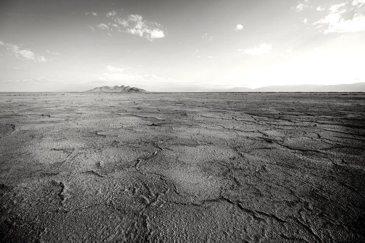 Aging ungracefully Utah UT The Great Salt Lake Great Salt Lake Shoreline Sand Dune Desert Arid Climate Sand Summer Drought Horizon Over Land Horizon Sky Landscape