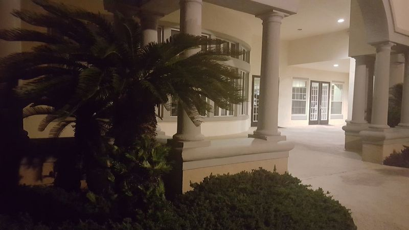 Architecture Building And Trees Building At Night Building Exterior Illuminated Luxury Modern Palm Tree Plant