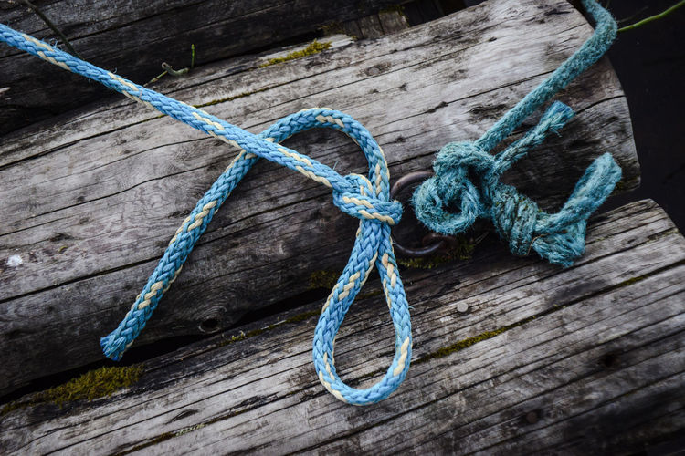 High angle view of blue rope tied on log