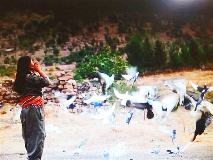 TheWeekOnEyeEM The EyeEm Facebook Cover Challenge Kurdi Devri Enjoying Life Taking Photos Ernestocheguevara Enjoying Life