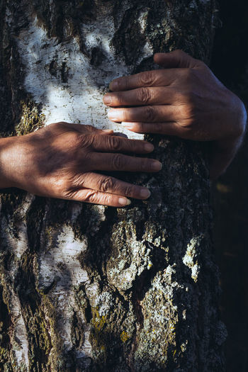 Birch hugging in the sun or looking for a shady place. Birch Climbing Close-up Day Hands Human Body Part Human Hand Leisure Activity Light And Shadow Live For The Story Men Nature Nusshain 06 17 Outdoors Real People Tree Tree Hug Tree Hugger Tree Hugging Tree Trunk