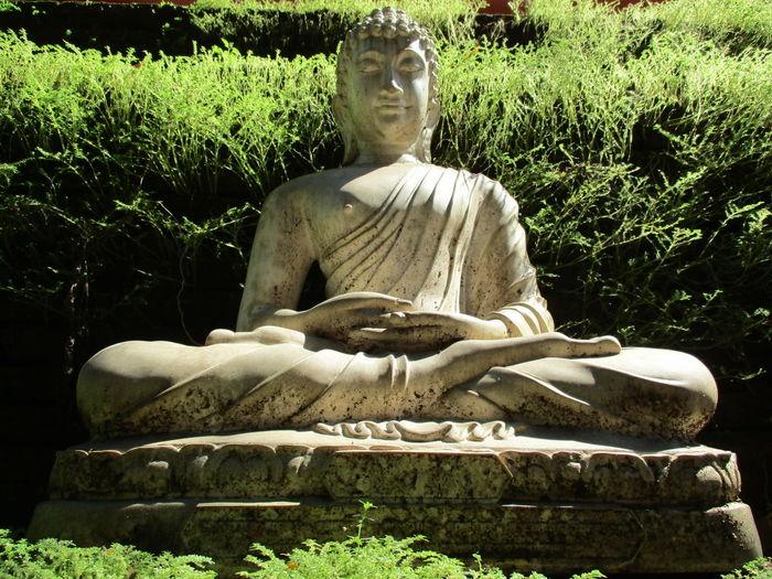 Budda Sculpture