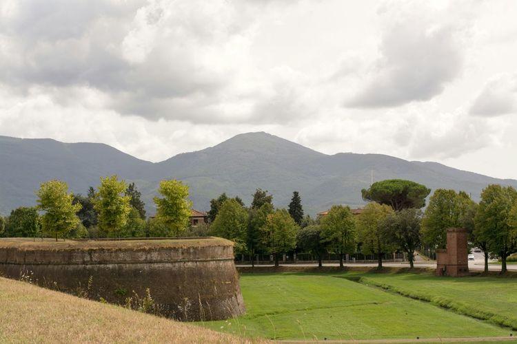 Le Mura Di Lucca Mura Di Lucca Lucca's Walls Trees Mountains Sky Mountains And Sky Trees And Sky Clouds Clouds And Sky