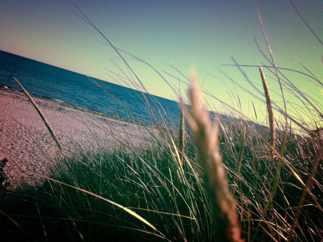 Cape Cod--edited with the Wood Camera app for iPhone!
