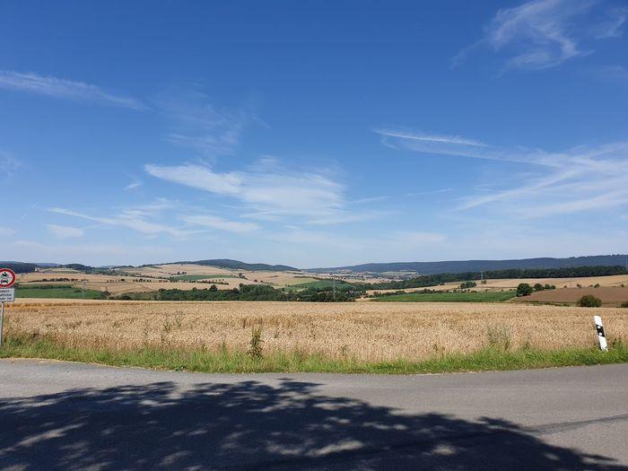 landscape near